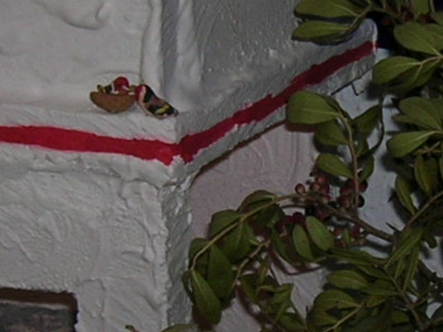 26-12-05 063. Belén de Carlota, Mariola y Zoilo (San Fernando - Cádiz)