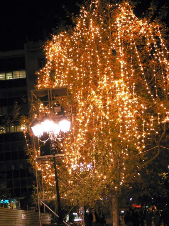 Detalle de arbol iluminado. Atenas (Grecia) (Atenas)