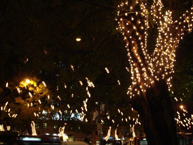 Espirales de Recoletos. Navidad 2005 en Madrid