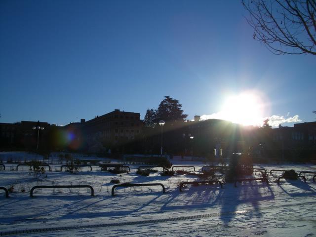 Ciudad Universitaria. Madrid con nieve