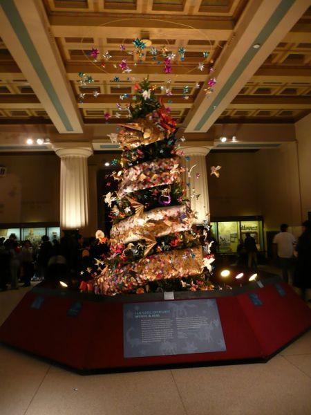 Arbol del Museo de Historia Natural. Nueva York (USA)