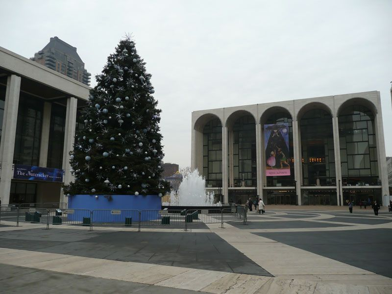 Arbol en Lincoln Center 2. Nueva York (USA)