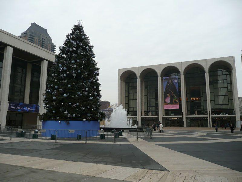 Arbol en Lincoln Center 2. Nueva York (USA)