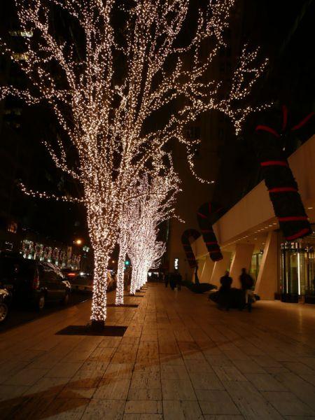 Arboles iluminados. Nueva York (USA)