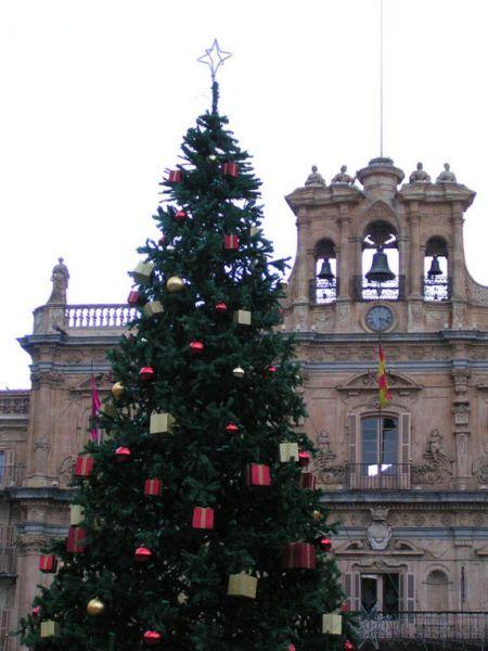 Plaza_Mayor_Salamanca. Salamanca (Espa�a)