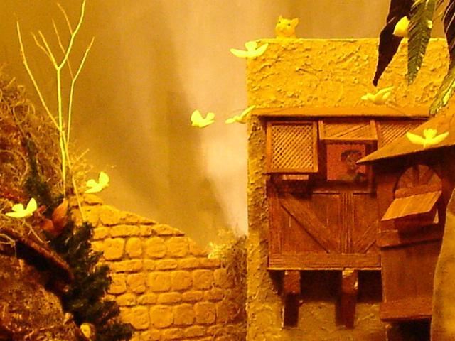 018 Niño y gato viendo a las palomas volar. Belén de Mauricio (Guatemala)