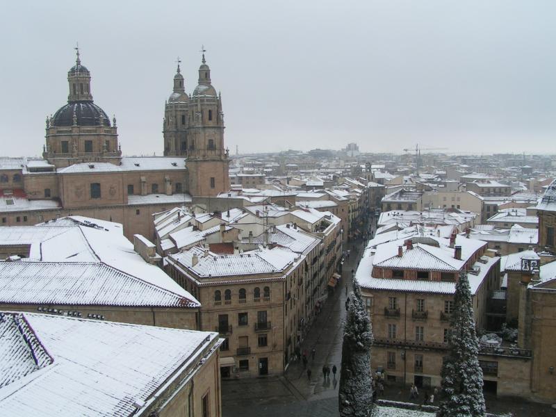 Desde Catedral Nueva (23-II-2005 11,40 horas). Salamanca (España)