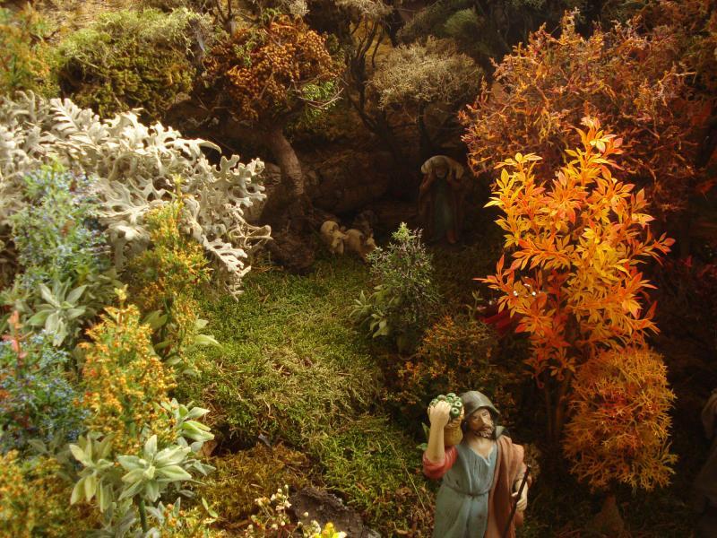 La naturaleza en su esplendor da la bienvenida al señor. Belén de Joaquin S. Font (Barcelona)
