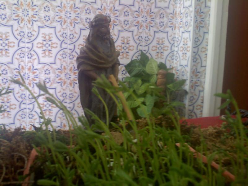 agricultor. Belén de Sara Huidobro Lobato (Algeciras)