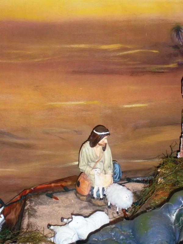 Pastor con ovejas adorando al niño Jesús. Belén de Solarte Mauricio (El Tambo Cauca)