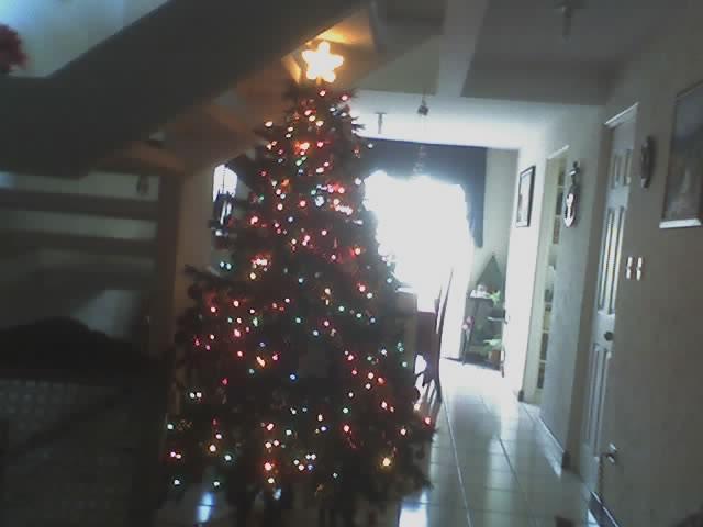 Mi Árbol  de Navidad.