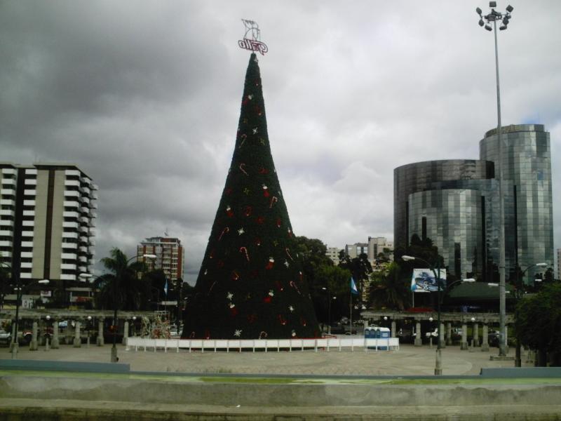 ARBOL NAVIDEÑO. Guatemala (Guatemala) (Ciudad de Guatemala)